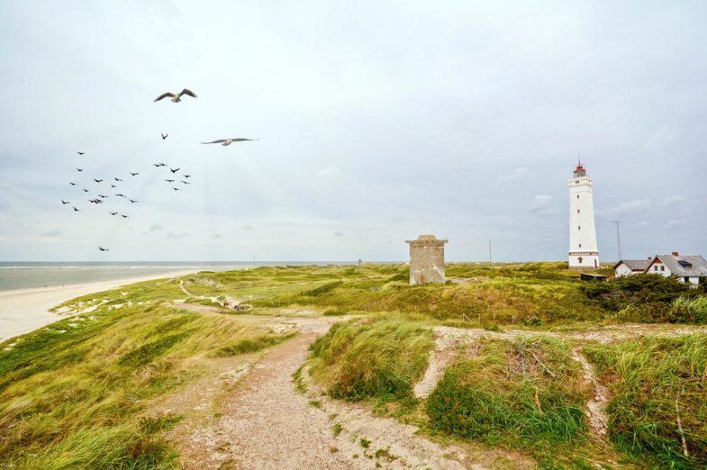 Blavand beach in Denmark