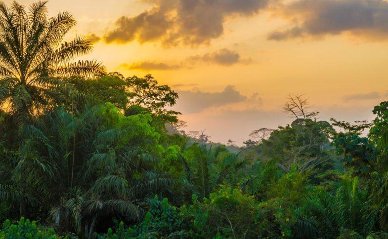 Landscape in Liberia