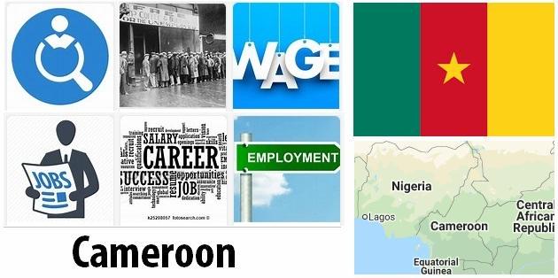 Cameroon Labor Market