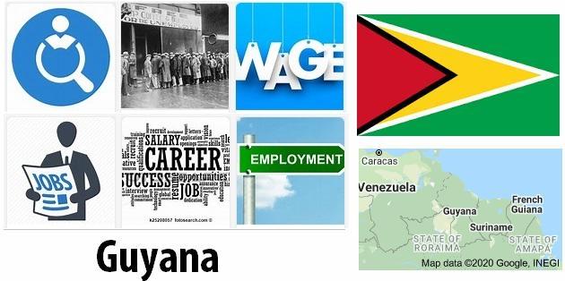 Guyana Labor Market
