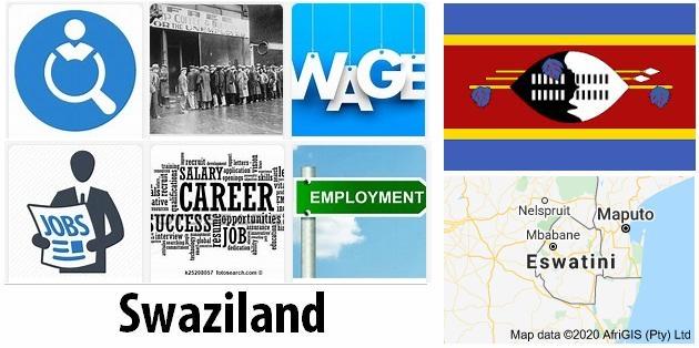 Swaziland Labor Market
