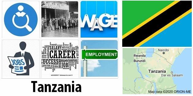 Tanzania Labor Market