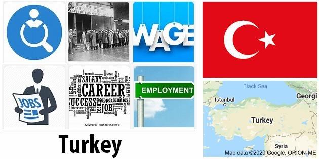 Turkey Labor Market