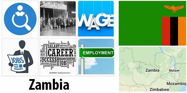 Zambia Labor Market