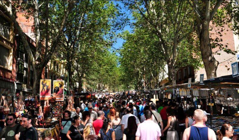 The Madrid Trail