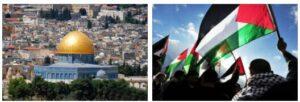 Palestine 2014 Part 3